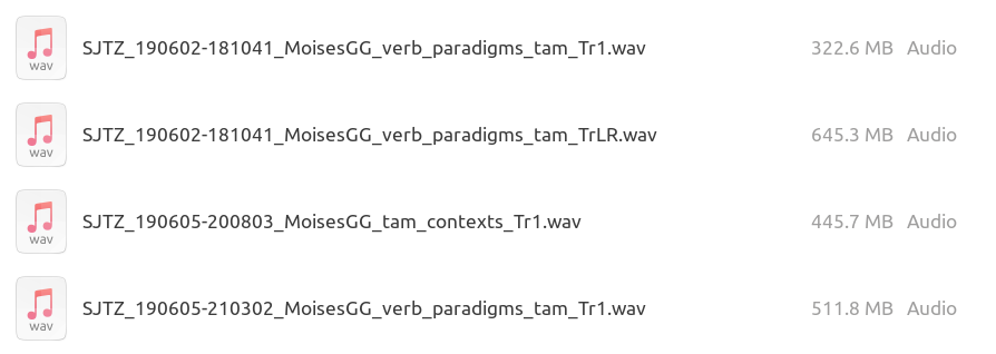 A screenshot of files named with the schema defined above, for example 'SJTZ_190602-181041_MoisesGG_verb_paradigms_tam_Tr1.wav'