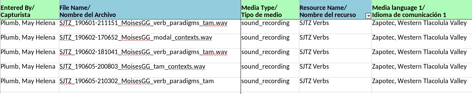The spreadsheet headings include 'Entered by', 'File name, 'Media Type', 'Resource Name', and 'Media language 1'. The media type for each file is 'sound_recording', and the resource name is 'SJTZ Verbs'. The first media language is 'Zapotec, Western Tlacolula Valley'.