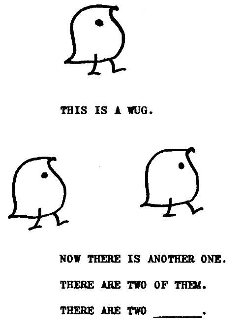 A drawing of a bird is followed by the text 'This is a wug'. Two more birds are followed by the text 'Now there is another one. There are two of them. There are two _'